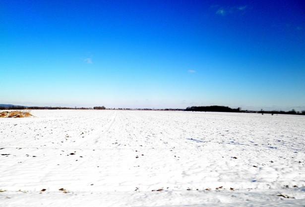 Alone in a vast Snowy Field - Social Media Isolation